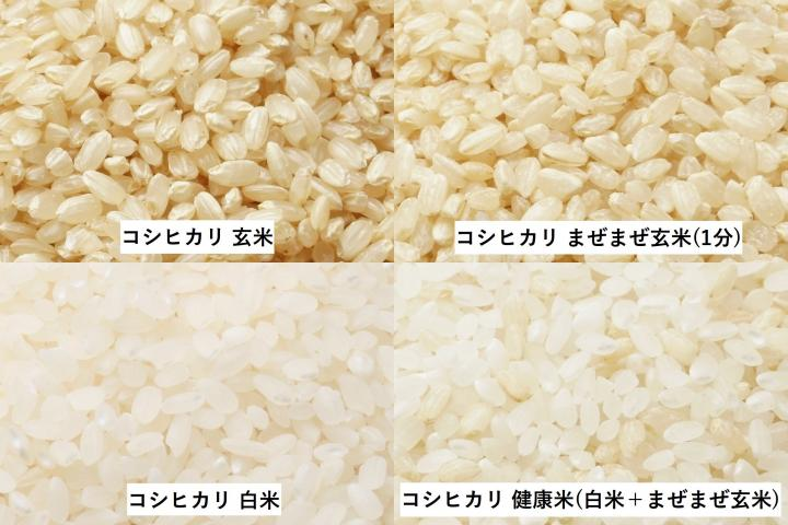 「ミルキークイーン/健康米」商品写真 3